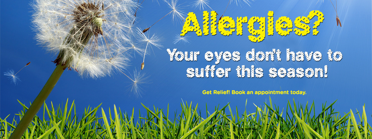 allergy-dandelion-slideshow